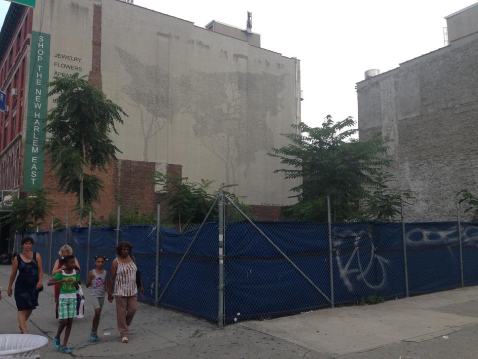open lot in harlem ready for development