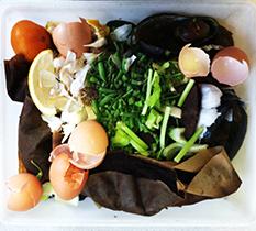 0815_compost2