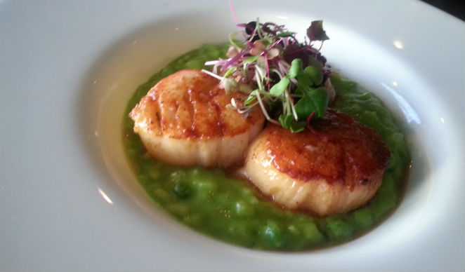 bth Scallops & Green Pea Puree1