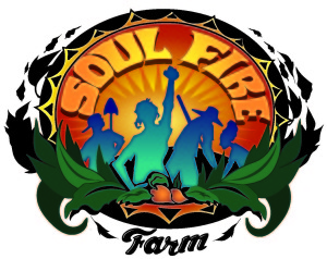 SOULFIRE_FINAL-color-shadow-text-300x238
