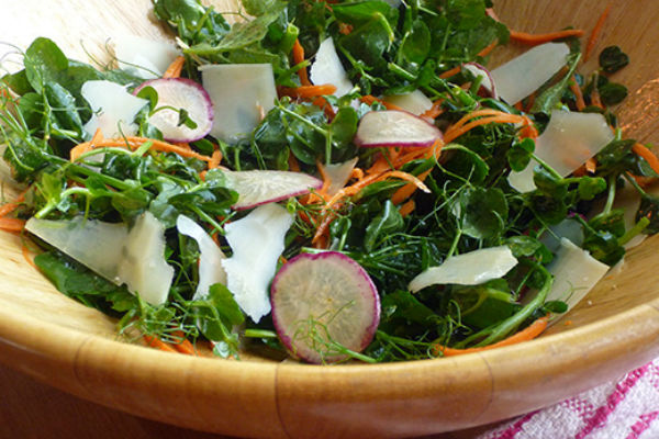 Pea Shoot Salad With Radish And Carrot