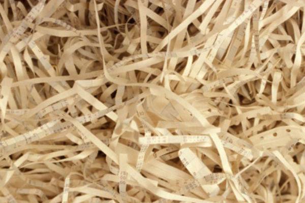 shredding in harem2