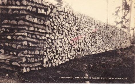 cut wood at 128th street in east harlem 1907