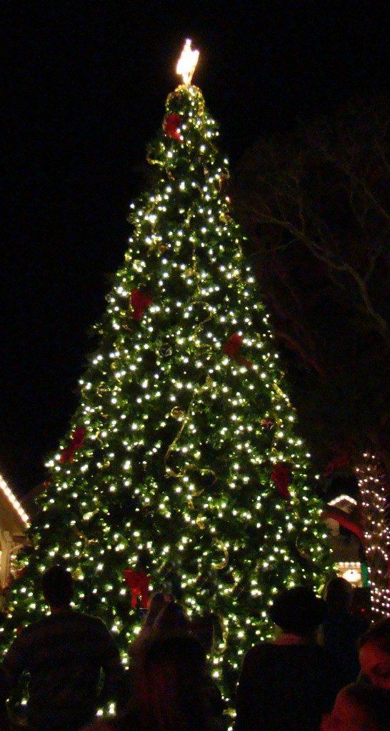 corner-socials-christmas-tree-lighting-celebration