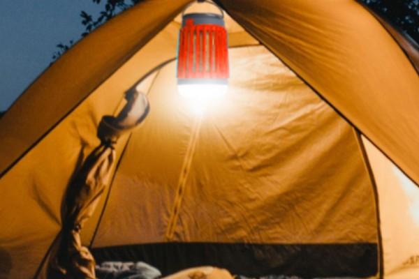 Fuze-Bug-tent-2.jpg (600×400)